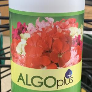 algoplus geranium and patio