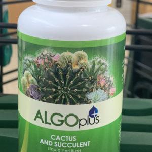 algoplus cactus