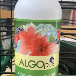 algoplus acid